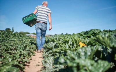 Bio von uns – Essen für den Klimaschutz