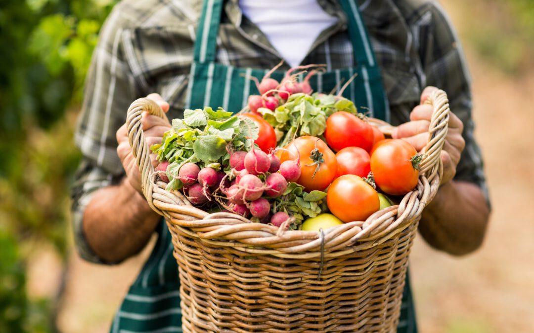 Challenge 05: Saisonal und regional einkaufen